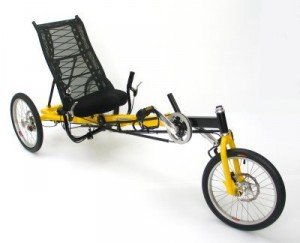 Greenspeed New Delta Trike - The Anura