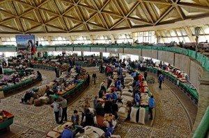 Tachkent marché Corsu ou tchorsu 03