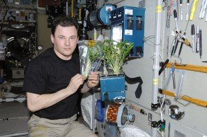 Station spatiale internationale en 2011  11