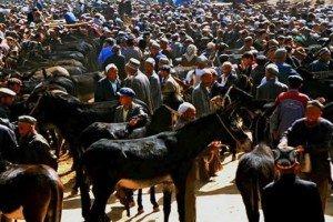 Kashgar 04 au marché du dimanche de Kashgar