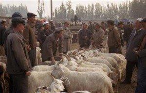 Kashgar 05 au marché du dimanche de Kashgar