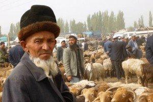 Kashgar 05 bis au marché du dimanche de Kashgar