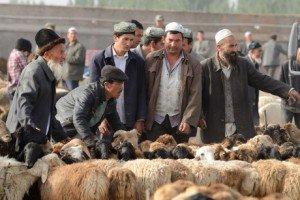 Kashgar 06 au marché du dimanche de Kashgar