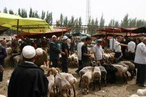 marché au animaux de Kashgar 01