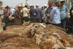marché au animaux de Kashgar 05