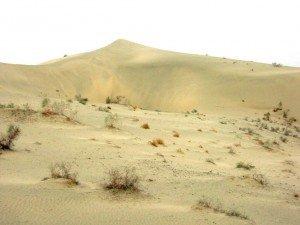 Xinjiang désert du Taklamakan 01