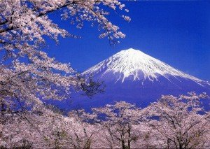 Mont Fuji 06 avec Sakura fleurs de cerisier