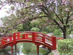 Pont japonais 02