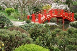Pont japonais de profil