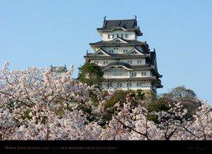 Himeji château 02