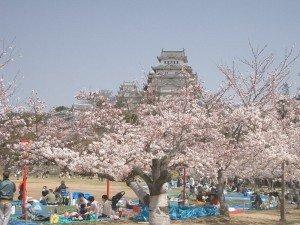 Himeji château 03