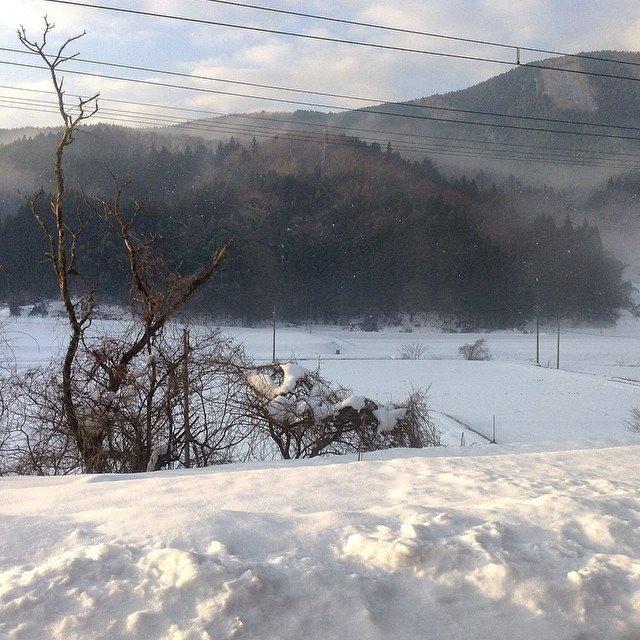 Le 5 janvier 2015 évoque les matin frais de la fenêtre de son train